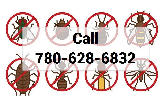 pest control in alberta 24 by 7